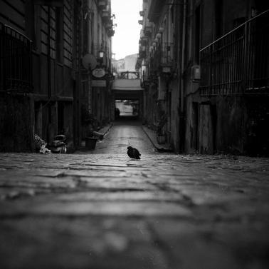 lonely-street-1-mirko-chessari