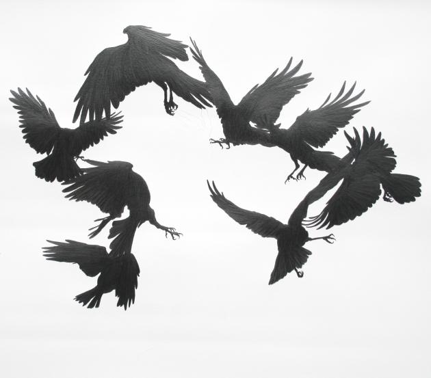 crow-surround-graphite-on-paper-2010-95x90cm1